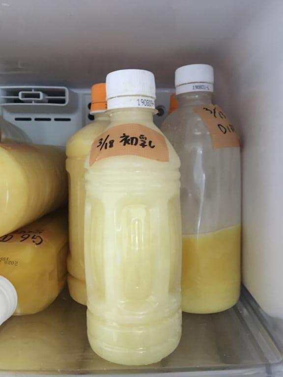 解凍させたヤギミルク